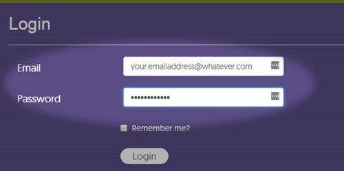 Completed Login Form screenshot